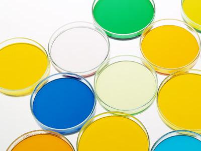 幹細胞コスメの由来成分の種類